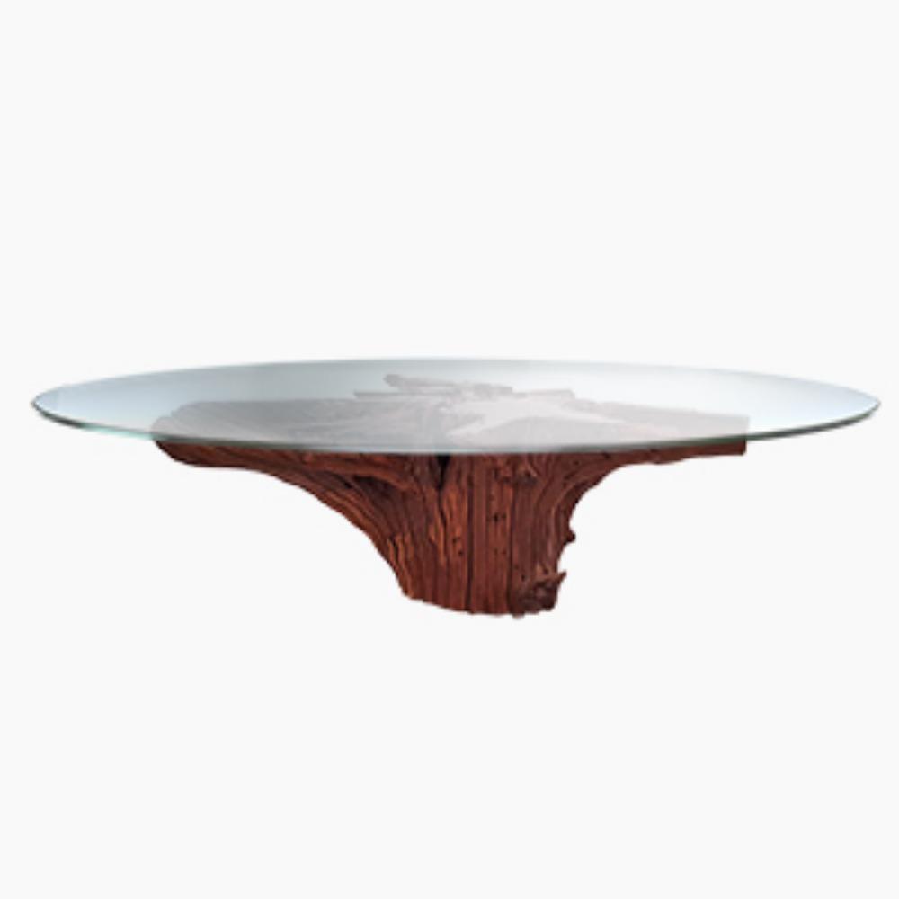 Coffee Table Riacho - Raiz
