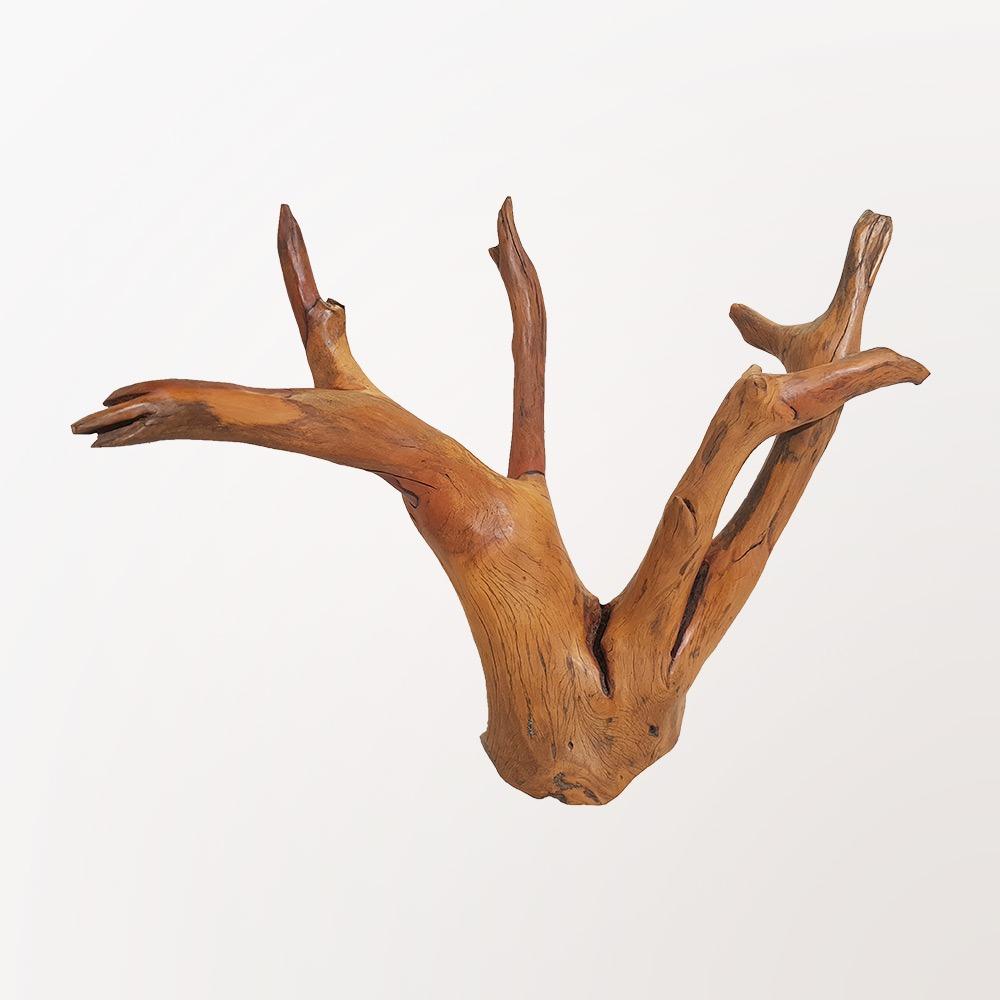 Escultura Chifre de Alce