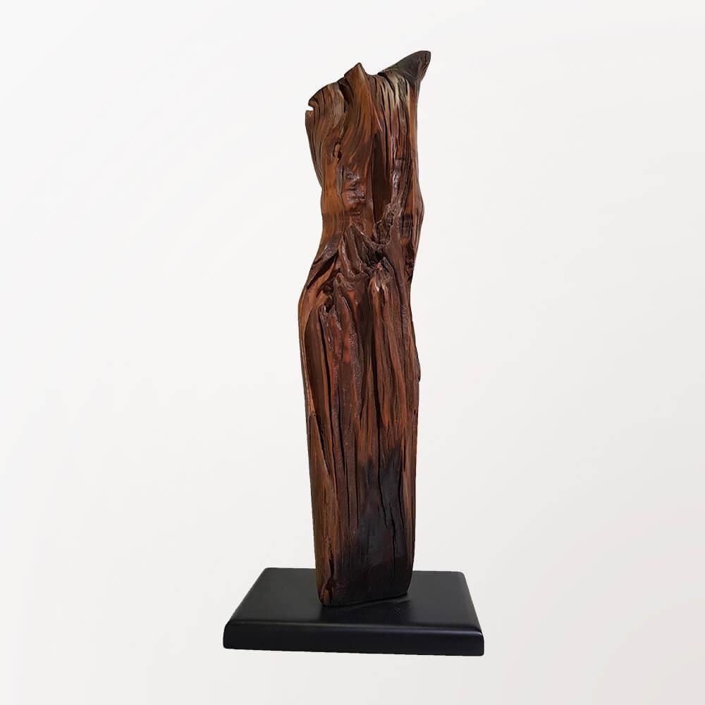 Escultura Penacho