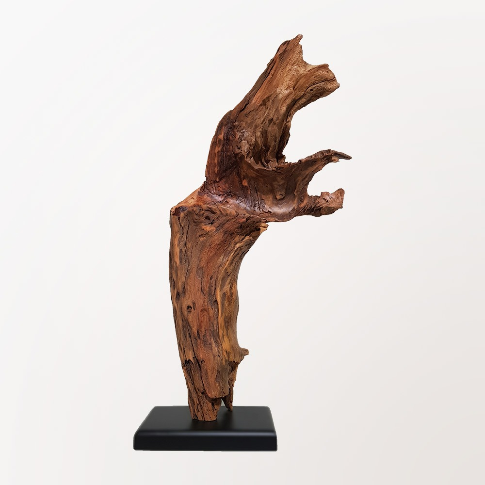 Escultura Côncava