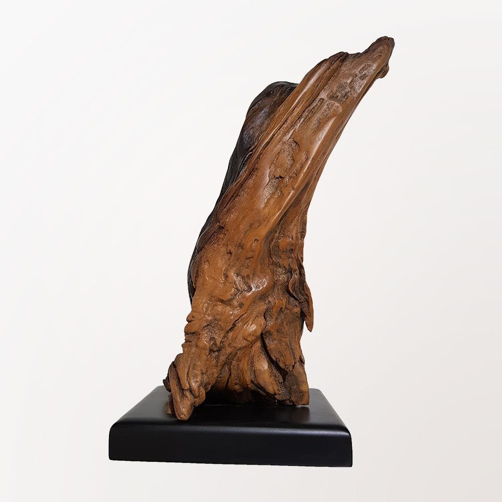 Escultura Pata