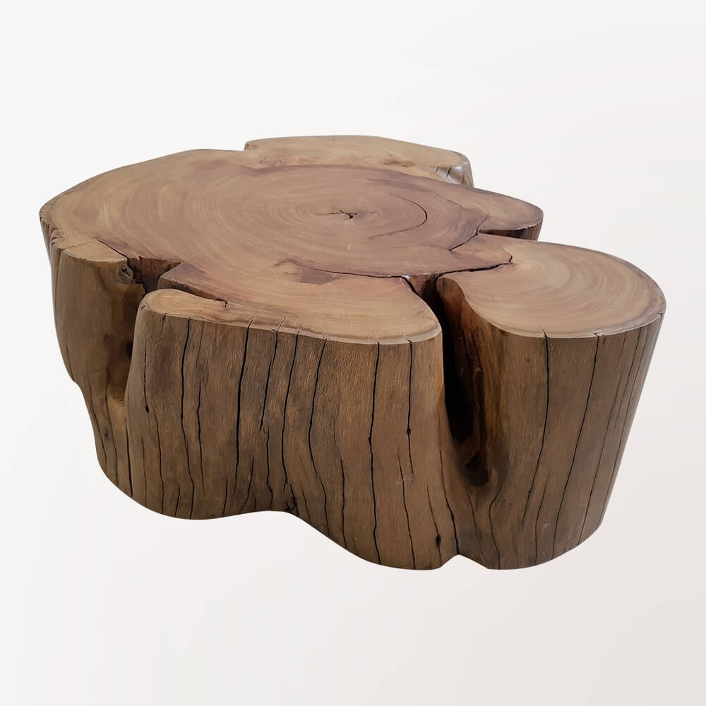 Coffee Table - Elephant
