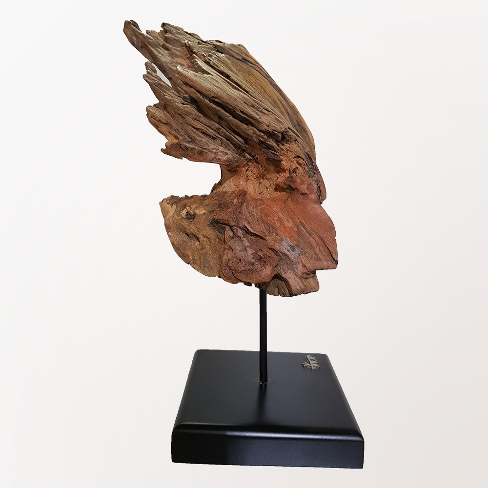 Sculpture Wind