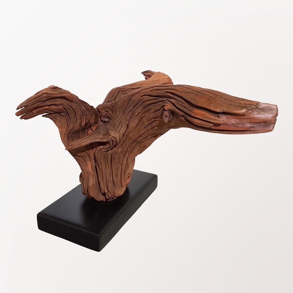 Toucan Sculpture