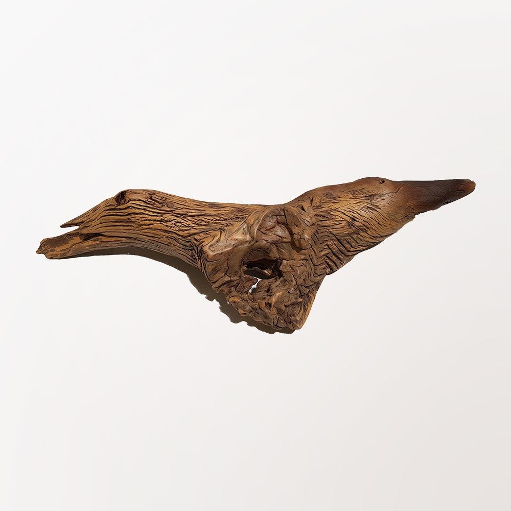 Ox Head Sculpture