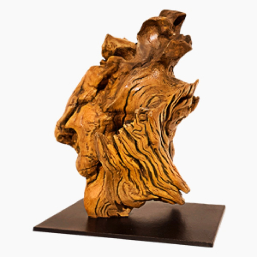 Acacia Sculpture